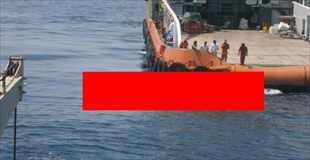 【画像】ペルシャ湾で発見されたクリーチャーがマジ化物