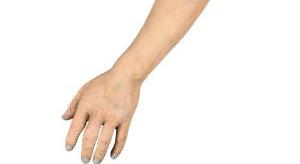 【画像】腕を切断する手順を丁寧に教えてくれていますよ