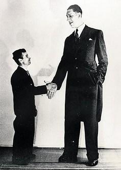 【画像】人類史上最も背が高い人間TOP10