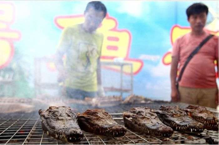 bbq_crocodiles_02_R