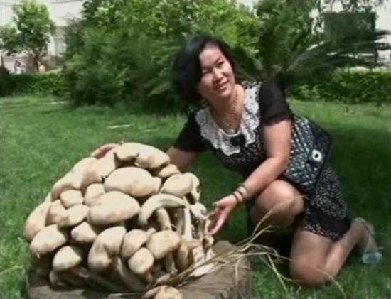 giant-mushroom-china-weighs-33-pounds-3_R