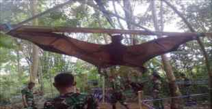 【画像】世界最大のコウモリがでかすぎて笑えない