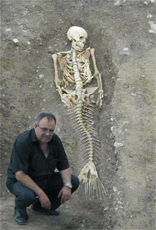 skeleton-mermaid-2_R