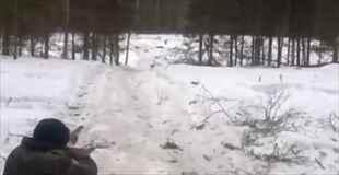 【動画】イノシシの狩りに失敗するとこうなります