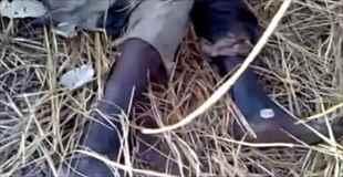 【動画】腐敗してしまい目玉もなくなってしまっている死体
