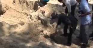 【動画】ビーチの砂浜に埋まっていた女性の遺体
