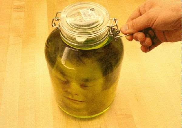 1395360492_head_jar_prank_05
