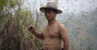【画像】全身蜂に覆われた男、っていうか覆われすぎ
