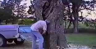 【神業】チェーンソーでぶっとい木を切ったけど運ぶのが面倒だな~って人必見!