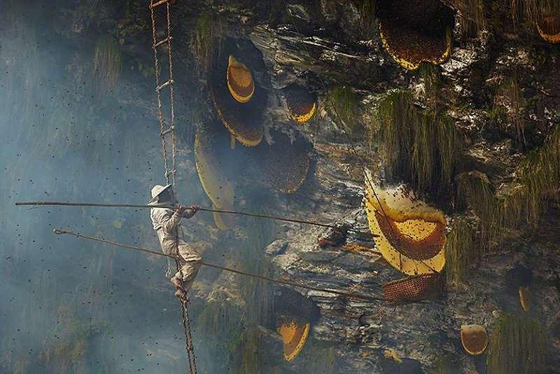 gurung-honey-hunters-suspended-midair