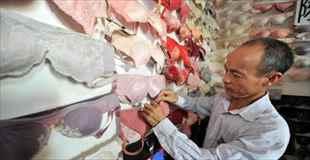 【画像】20年間で5000のブラジャーを集めた男
