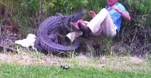 【動画】ワニに噛まれる科学者