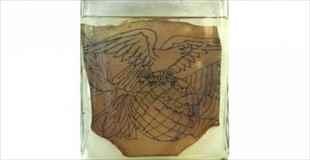 【画像】ホルマリン漬けされた囚人達のタトゥー