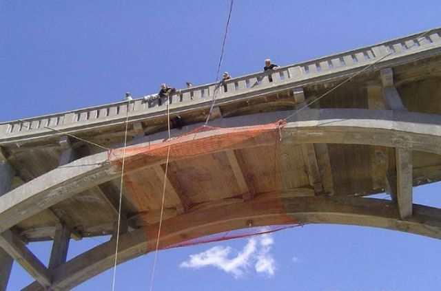 a_daring_bear_rescue_from_a_bridge_640_06