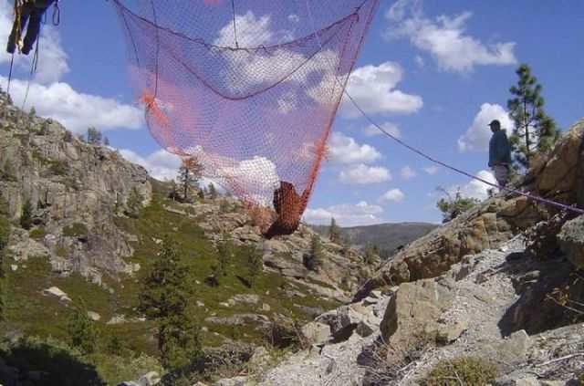 a_daring_bear_rescue_from_a_bridge_640_08