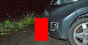 【画像】猫が車にめり込んでしまう事件が発生