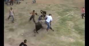 【衝撃】闘牛に背中を刺された少年…。