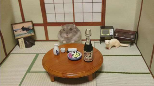 bartending_hamsters_are_one_of_the_cutest_things_ever_640_04
