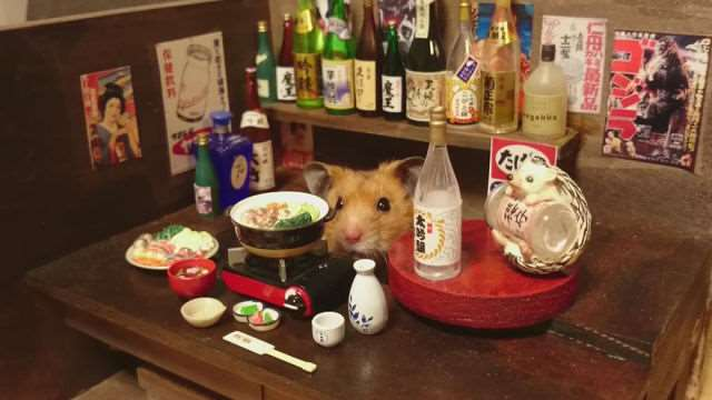 bartending_hamsters_are_one_of_the_cutest_things_ever_640_09