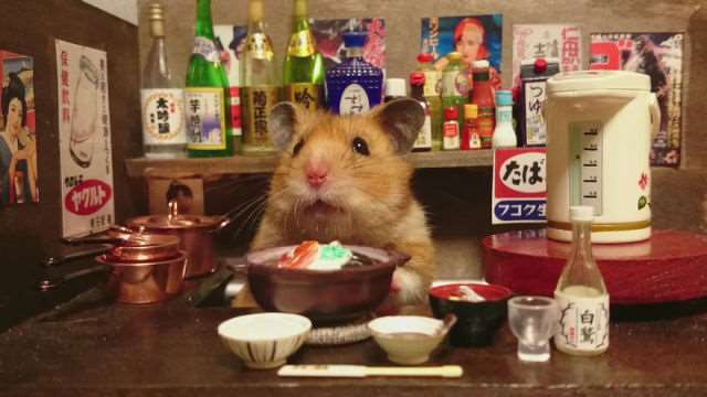 bartending_hamsters_are_one_of_the_cutest_things_ever_640_12