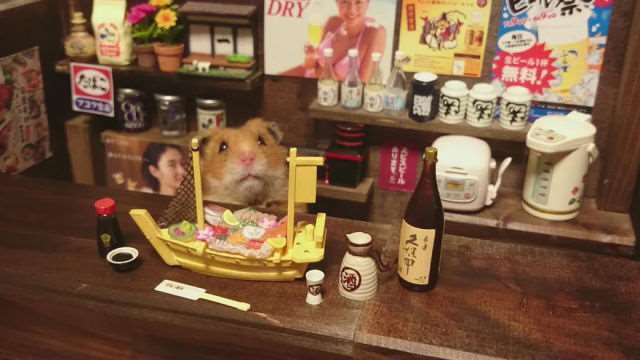 bartending_hamsters_are_one_of_the_cutest_things_ever_640_13
