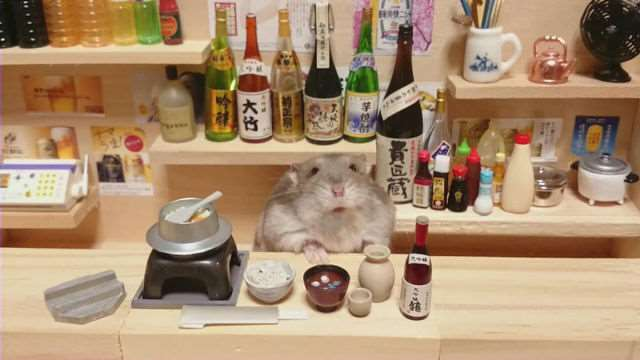 bartending_hamsters_are_one_of_the_cutest_things_ever_640_16