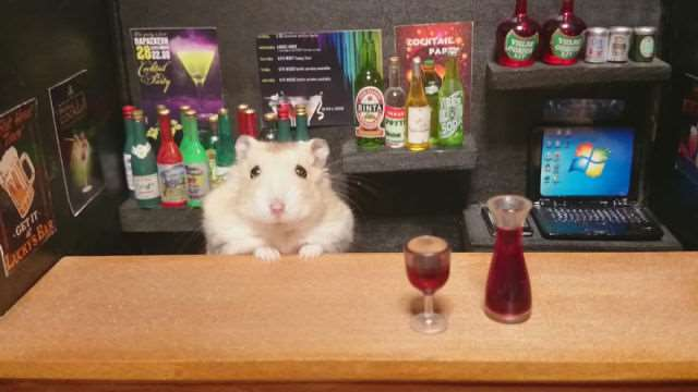 bartending_hamsters_are_one_of_the_cutest_things_ever_640_17