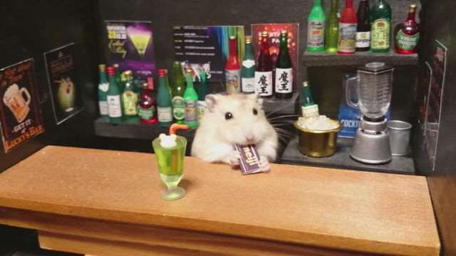 bartending_hamsters_are_one_of_the_cutest_things_ever_640_19