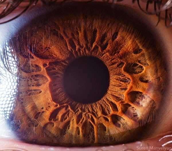 extreme-close-up-of-human-eye-macro-suren-manvelyan-13