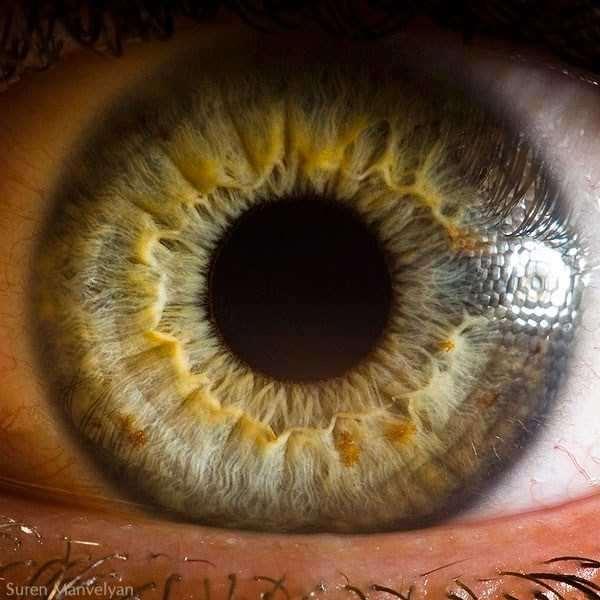 extreme-close-up-of-human-eye-macro-suren-manvelyan-2