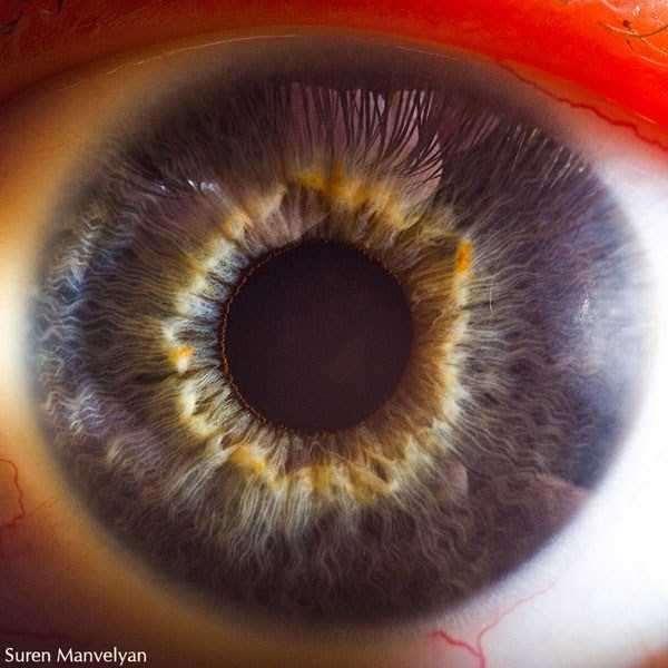 extreme-close-up-of-human-eye-macro-suren-manvelyan-4