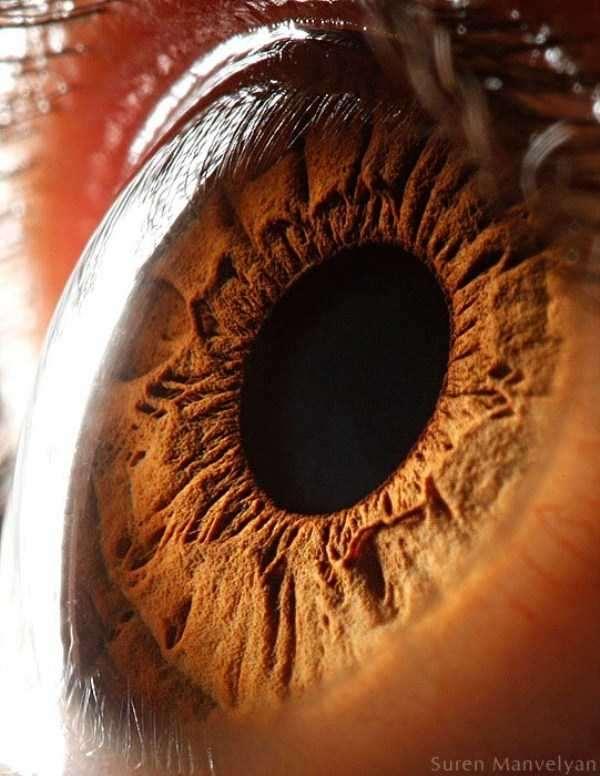 extreme-close-up-of-human-eye-macro-suren-manvelyan-5