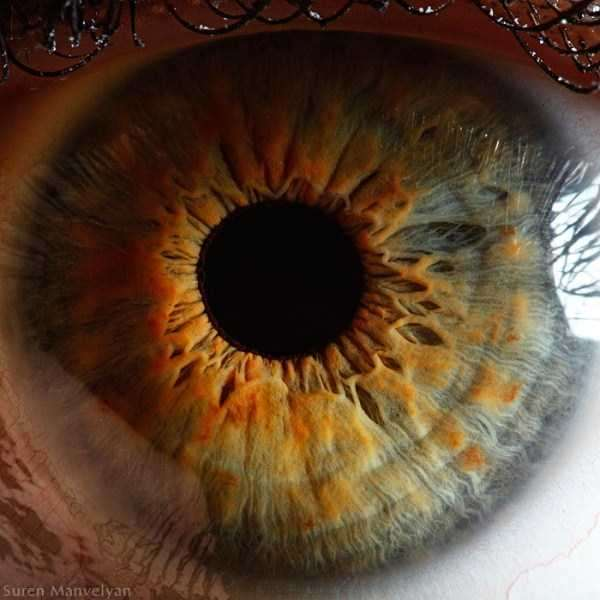 extreme-close-up-of-human-eye-macro-suren-manvelyan-6