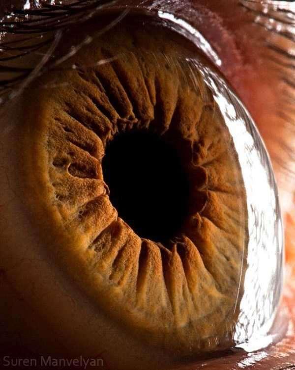 extreme-close-up-of-human-eye-macro-suren-manvelyan-7