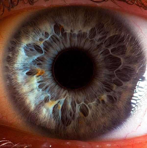 extreme-close-up-of-human-eye-macro-suren-manvelyan-8