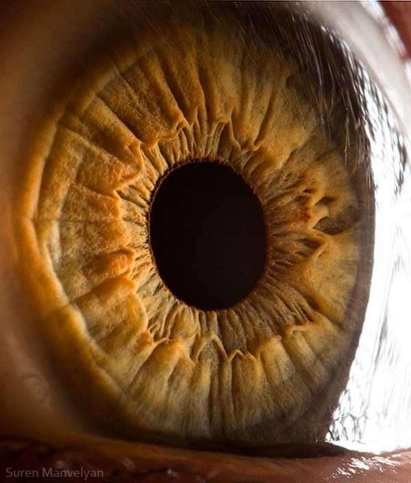 extreme-close-up-of-human-eye-macro-suren-manvelyan-9