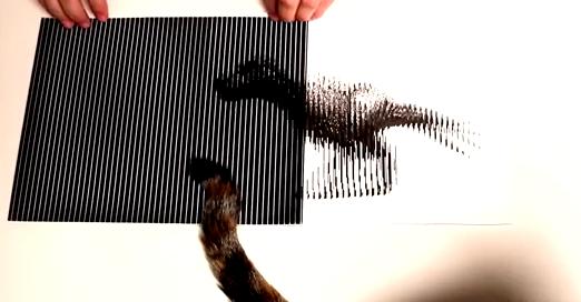 【動画】これが目の錯覚とかマジかよって映像ヤバイ