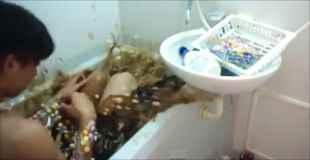 【動画】日本人がメントスを体中に巻きつけてコーラ風呂に入る動画が話題に
