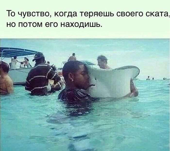 1424034892_podborka_51