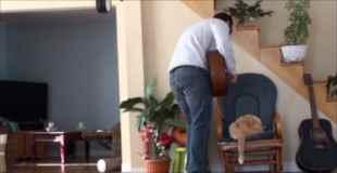 【動画】意地悪された猫が主人に復讐w