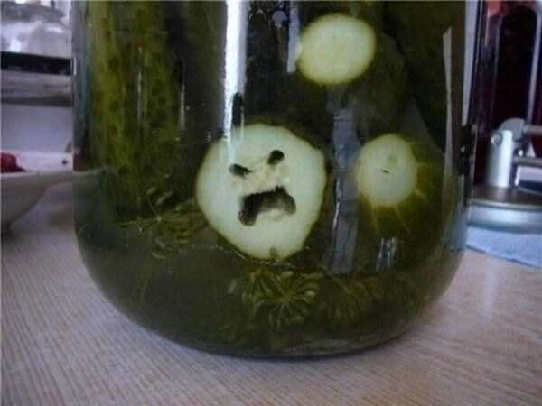weird-faces-seen-in-things-9