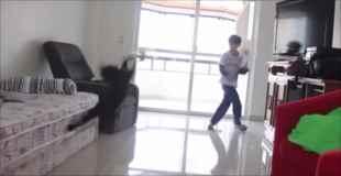 【動画】脅威の反射神経を見せる猫ゴールキーパーw