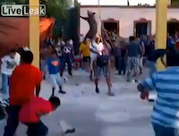 【衝撃映像】生きてる動物を弄ぶメキシコの狂気的死の祭り