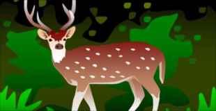 【画像】森林火災があった場所で鹿を発見したんだけど…