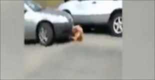 【喧嘩動画】喧嘩で負けた腹いせに車で轢かれる黒人の女