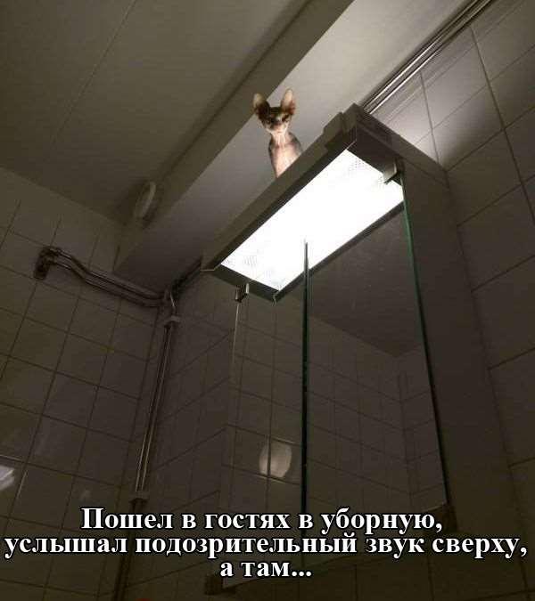 1435044741_podborka_107