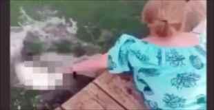【衝撃映像】魚にエサ上げてたら手食べられたったwww