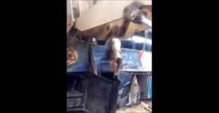 【閲覧注意】バスの横転事故・・・持ち上げると窓から女性が宙ぶらりに・・・