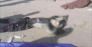 【画像】ウエットスーツを着用したまま頭部が白骨化した死体が発見される