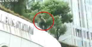 【閲覧注意】3階からバク転で自殺をする男性を撮影した動画…。